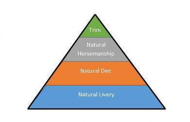 natural-horse-care-pyramid