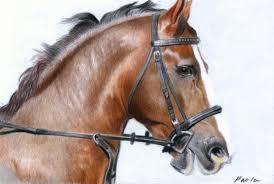 horses-head-1