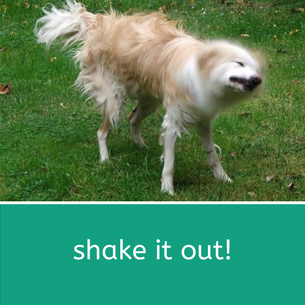 This image has an empty alt attribute; its file name is shake.png